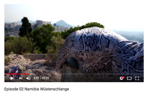 Membrane TJ SNAKE Episode 02 Namibia Wüstenschlange